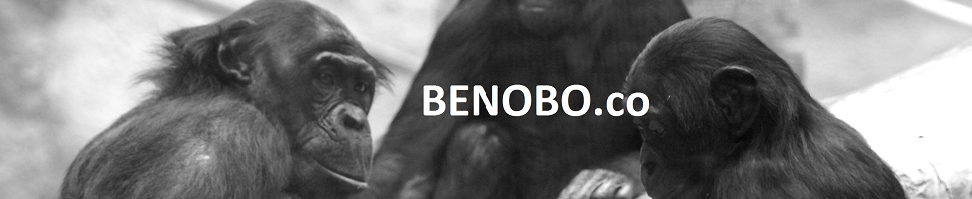 BENOBO.co
