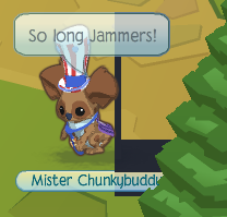 how to change your animal jam username