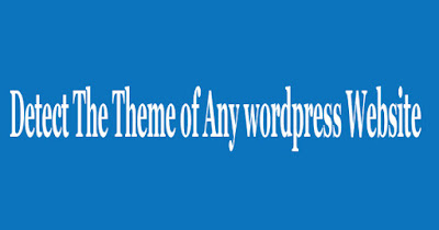 Detect wordpress theme