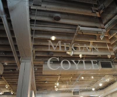 Megan Coyle Manassas Artist Talk
