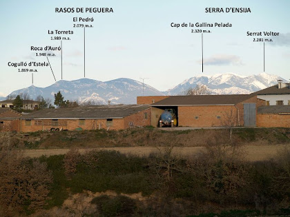 Panoràmica dels Rasos de Peguera i la Serra d'Ensija des de l'alçada d'El Grèvol