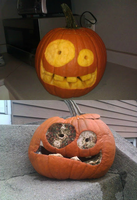 Your pumpkin on meth