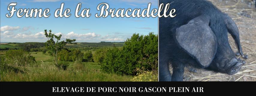 Ferme de la Bracadelle Porc Noir Gascon