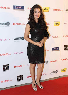 Diya mirza at Filmfare Nominations Bash