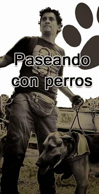 PASEANDO CON PERROS