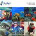 【小琉球浮淺推薦】蟹老闆專業浮潛-與綠蠵龜共遊