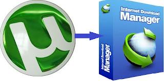 convert torrent to idm