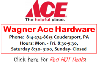 Wagner Ace Hardware
