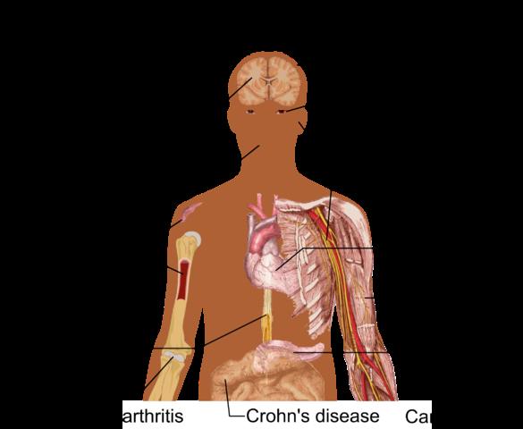potentials of stem cells
