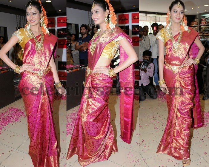 Swetha in Trisha's Silk Saree