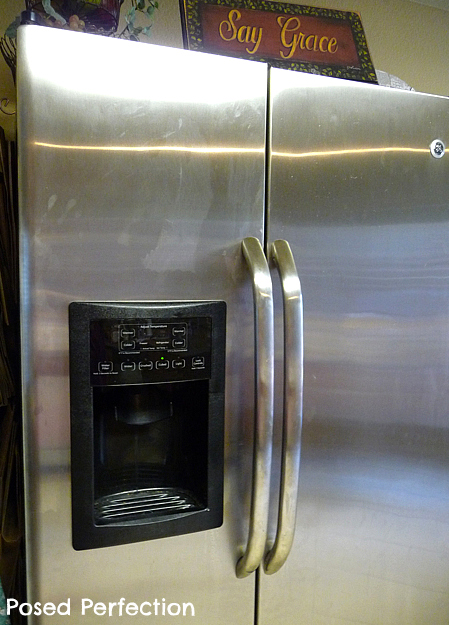 Posed Perfection Cleaning Stainless Steel Appliances