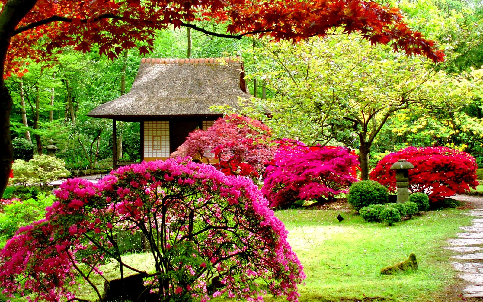 Gardens hd wallpapers Beautiful home garden images