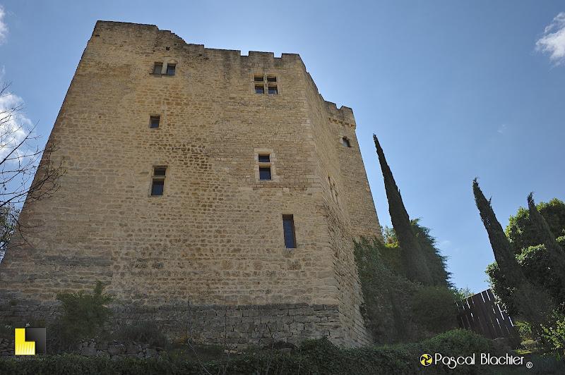 le château de mollans sur ouvèze photo pascal blachier au delà du cliché