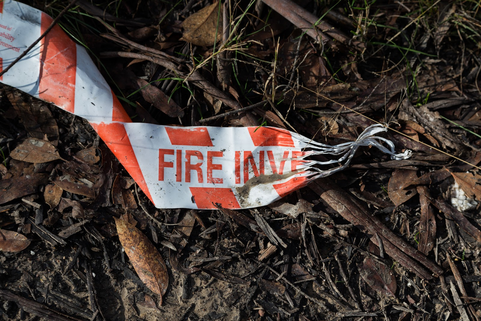 fire investigation tape lying in forest