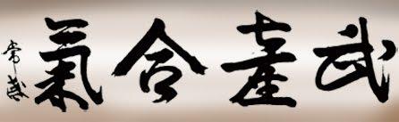 Shosenjuku Aikido Coapa