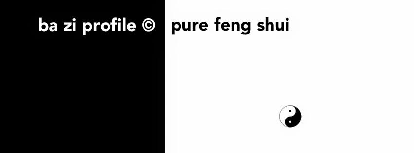 Pure Feng Shui