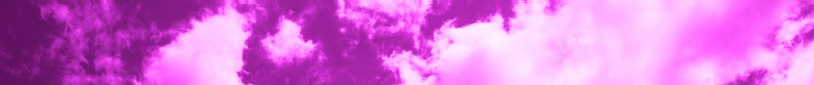 The Pink OmniBus