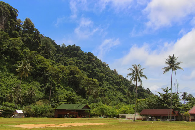 the coconut plantation in the island denizmontreal.blogspot.com