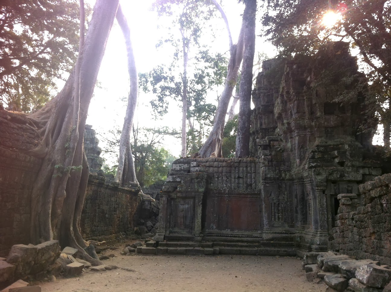 Ta Prohm temple in the Angkor complex, Siem Reap, Cambodia