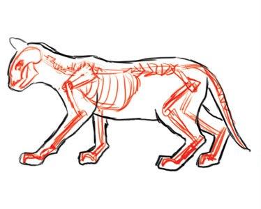 Corso di grafica e disegno per imparare a disegnare come - Gatto disegno modello di gatto ...