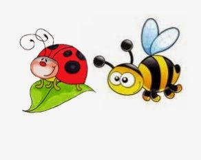 Projet Coccinelles extra et abeilles ordinaires