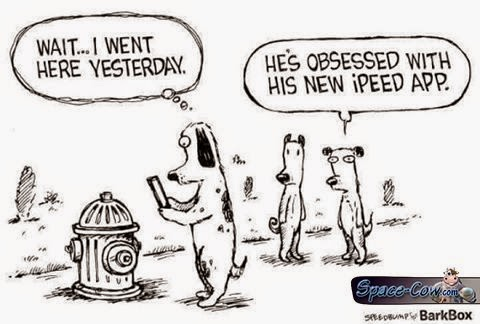 funny dogs comics humor