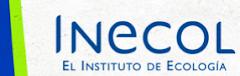 INECOL - El Instituto de Ecología
