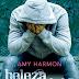 [Promoção] Beleza Perdida (Amy Harmon)