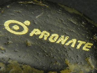 プロネートのロゴを金色で印刷した写真