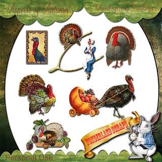 http://2.bp.blogspot.com/-XvaPtiT7A2I/VkIkpKNblPI/AAAAAAAAGhE/AgfKQxEcelI/s320/ws_AOA_ThanksgivingTurkeys_pre.jpg