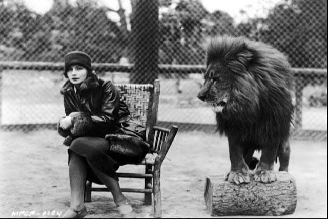 greta garbo  leones de la Metro Goldwyn Mayer