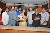 Hora Hori Movie Audio success meet-thumbnail-3