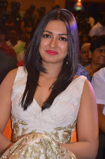 Actress Catherine Tresa Picture Gallery at Kanithan Movie Audio Launch  25283