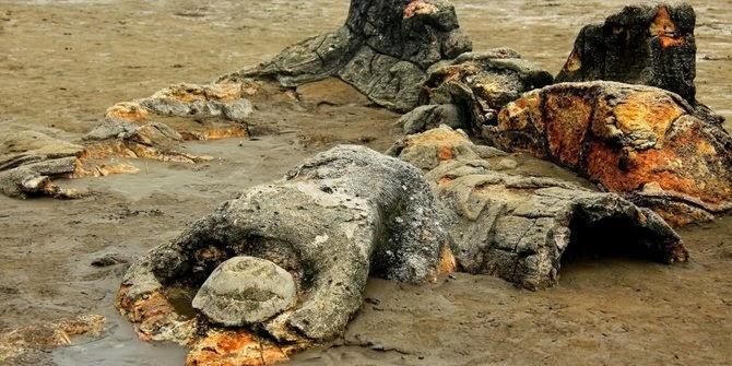 Manusia Yang Dikutuk Jadi Batu