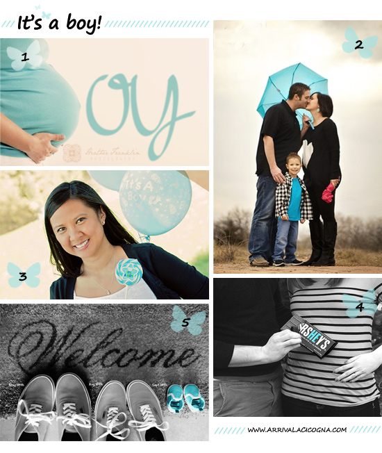 the Stork is Coming Baby gender reveal ideas – Ideas for Announcing Baby Gender