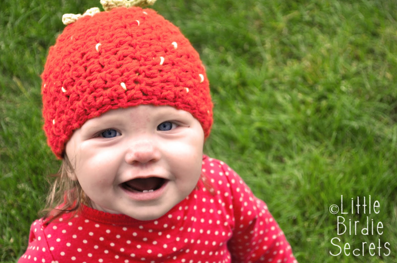 raspberry or strawberry free crochet pattern {and a crochet hat head ...
