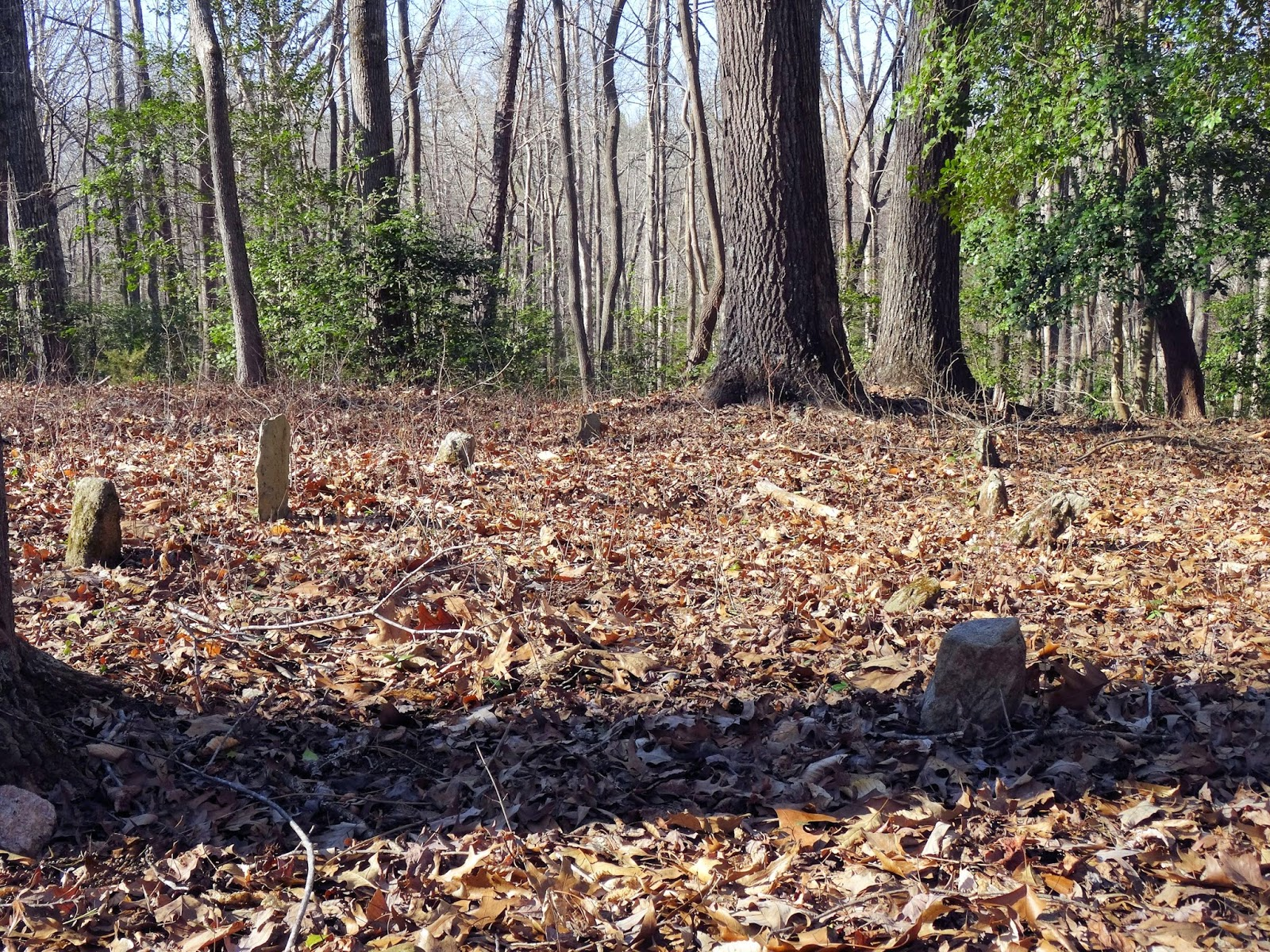 Walnut Grove Plantation – Roebuck – Spartanburg County