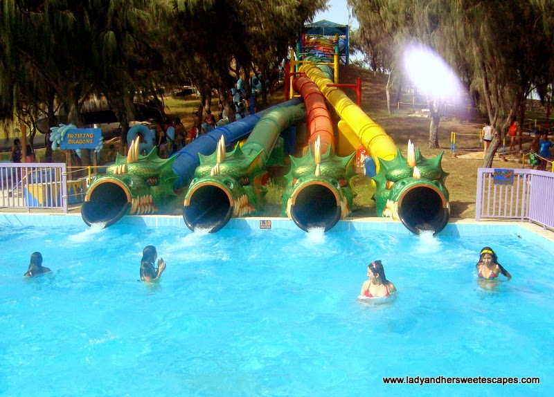 Twisting Dragons at Dreamland Aqua Park