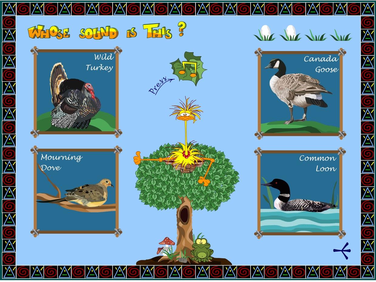 Послушать голоса птиц 5 фотография