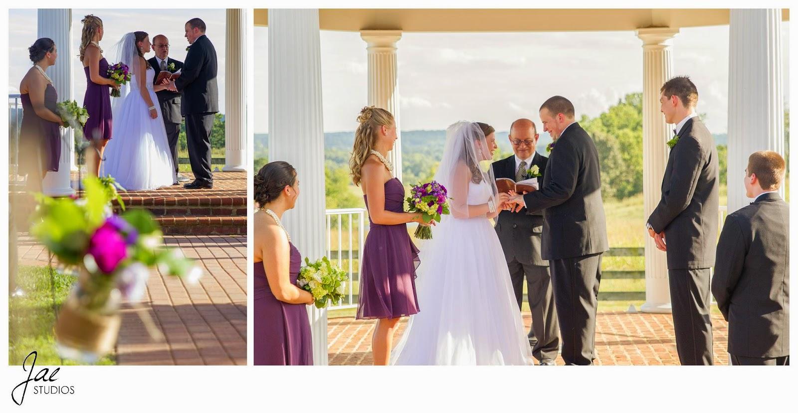 Jonathan and Julie, Bird cage, West Manor Estate, Wedding, Lynchburg, Virginia, Jae Studios, outdoors, ceremony, flowers, brick, vows, rings, bridesmaids, groomsmen, pastor