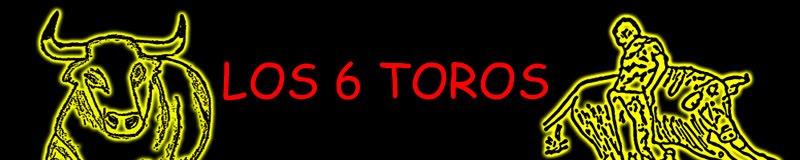 LOS 6 TOROS