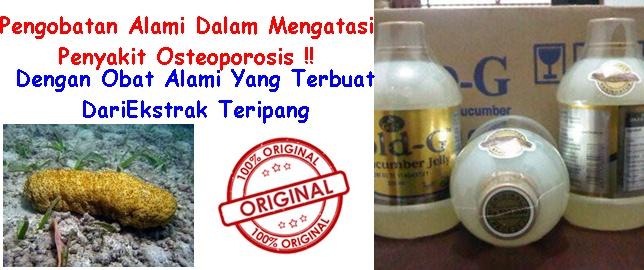 Obat Tradisional Osteoporosis Herbal Alami