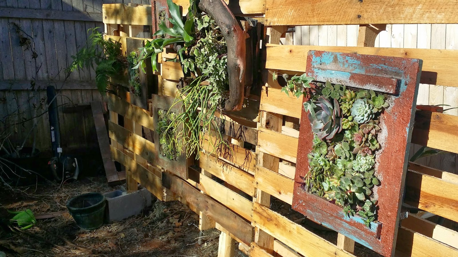 Think Outside The Flower Bed At The Okc Home Outdoor