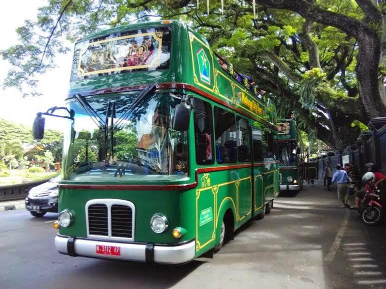 Bus MACYTO