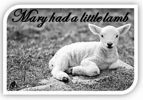 Lesson Plan for Mary Had a Little Lamb