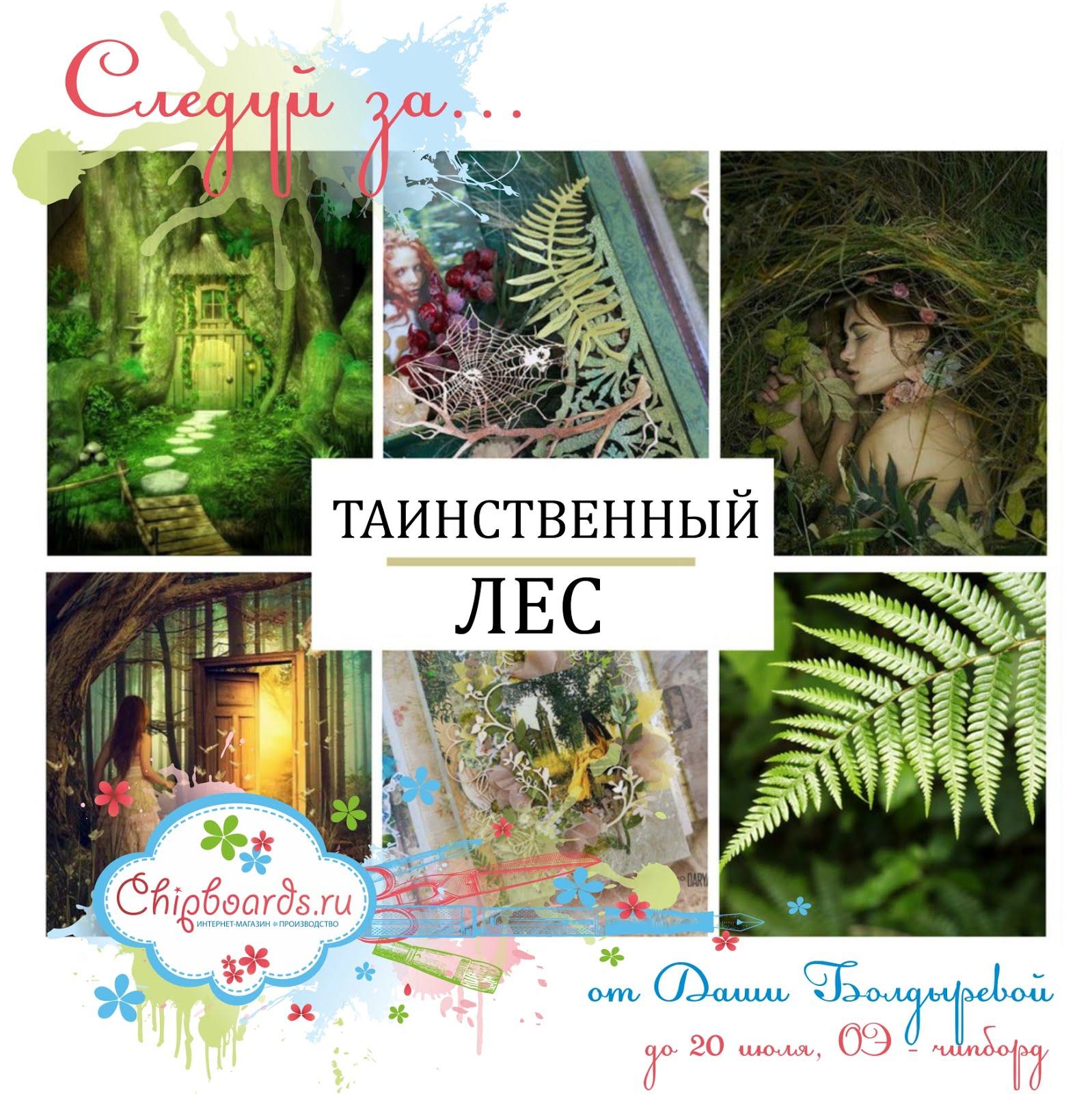 Задание №12. Таинственный лес