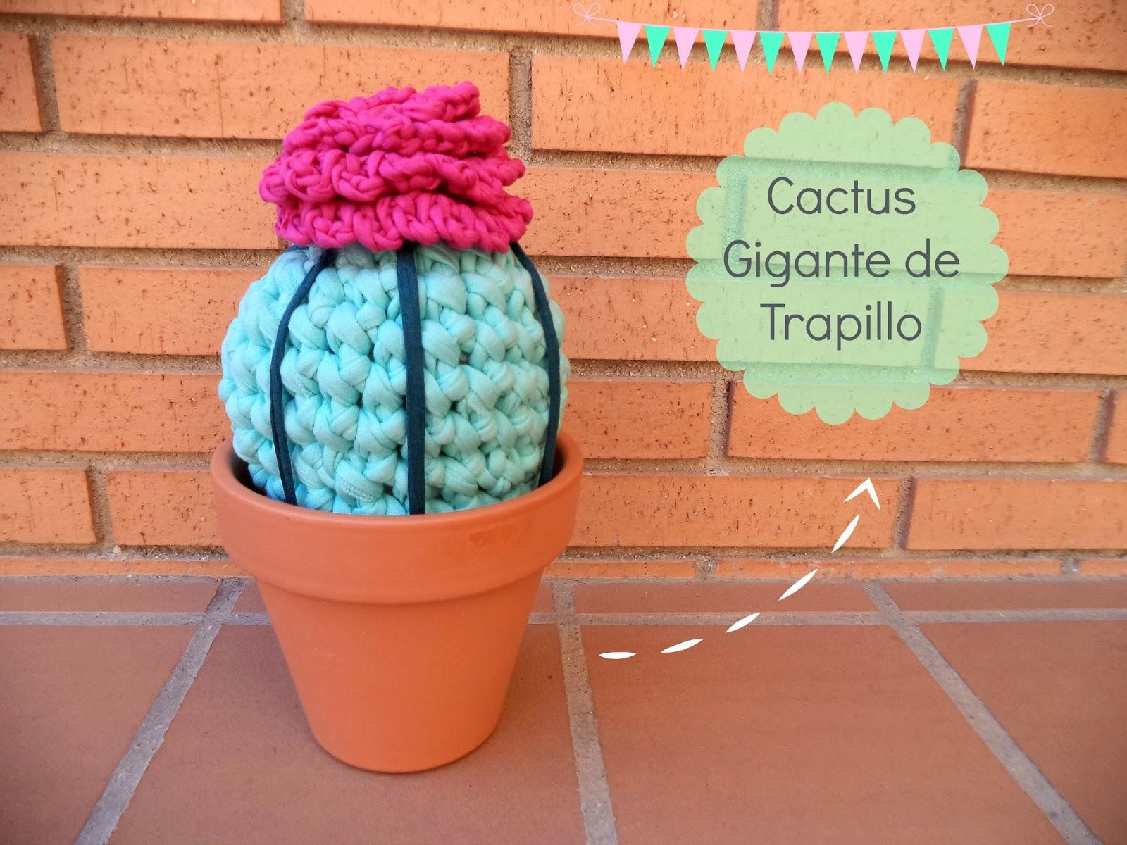 cactus de trapillo