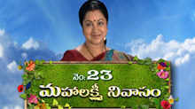 No.23 Mahalakshmi Nivasam Geminitv Serial Index