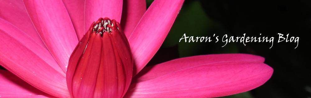 Aaron's Gardening Blog