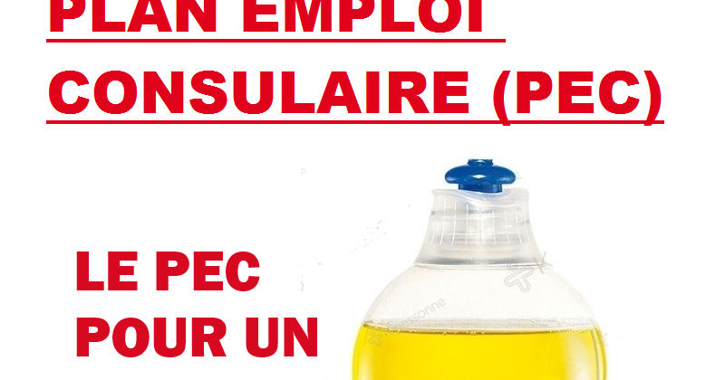 Le pec plan emploi consulaire d graisse l emploi dans - Chambre de commerce et d industrie ile de france ...
